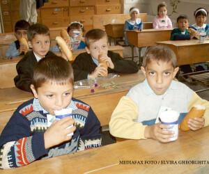 elevi care consuma corn si lapte