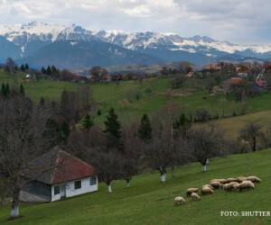 sat din Romania