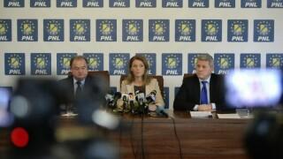 Vasile Blaga, Alina Gorghiu, Catalin Predoiu