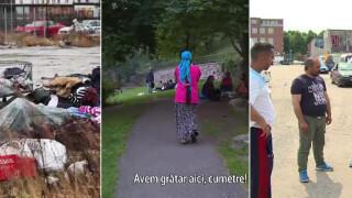 rti cover Suedia cersit