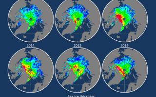 caldura la Polul Nord