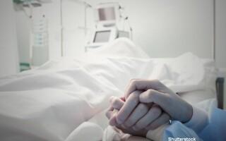 Pacient, spital