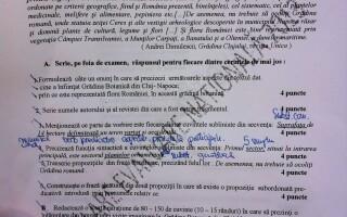 subiecte evaluare nationala 2013