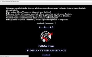 site atacat de Fallaga Team