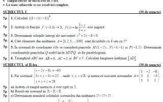 subiecte la matematica 2010
