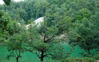 Lacul Albastru