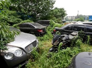 Cimitirul de masini care ascunde bolizi de lux in valoare de milioane de dolari