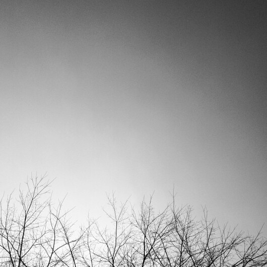 orb fotografii - 1
