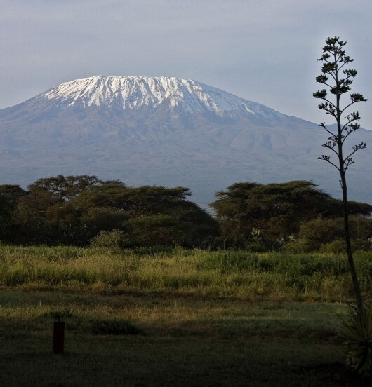 The Snow on Mt. Kilimanjaro