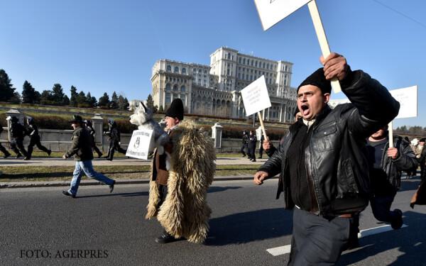 protest al ciobanilor la Parlament