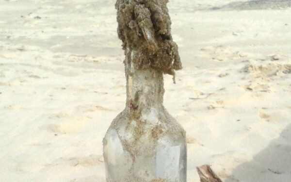 sticla franta
