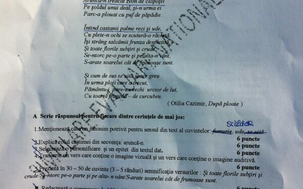 subiecte simulare romana EN 2013