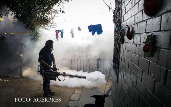 masuri impotriva bolii Zika