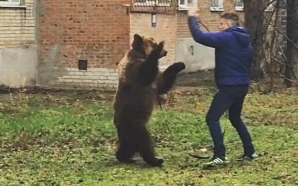 rus cu urs in Taganrog