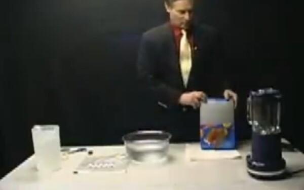 Experiment fulgi de porumb