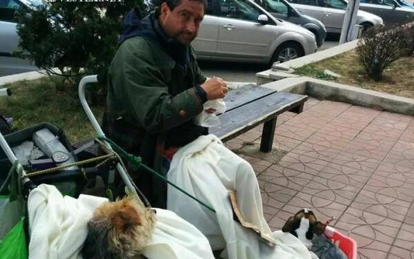 cersetor italian in Piatra neamt