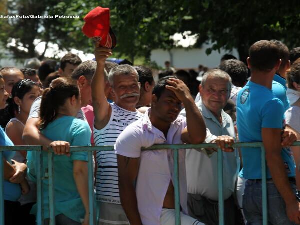 Alegeri in Curcani