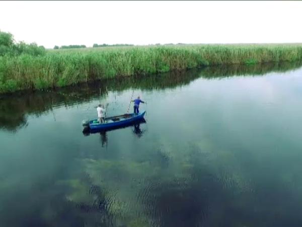 Dunare