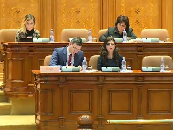 Ionut Mișa, Parlament