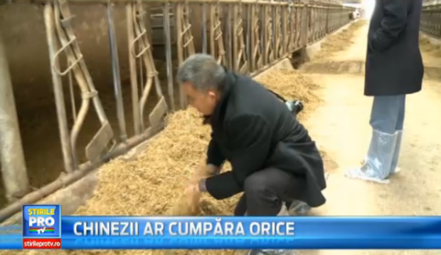Agricultori chinezi in Romania