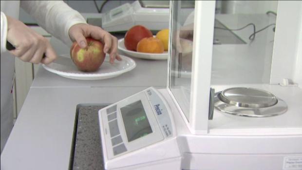 analiza fructe