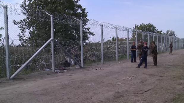 gard migranti