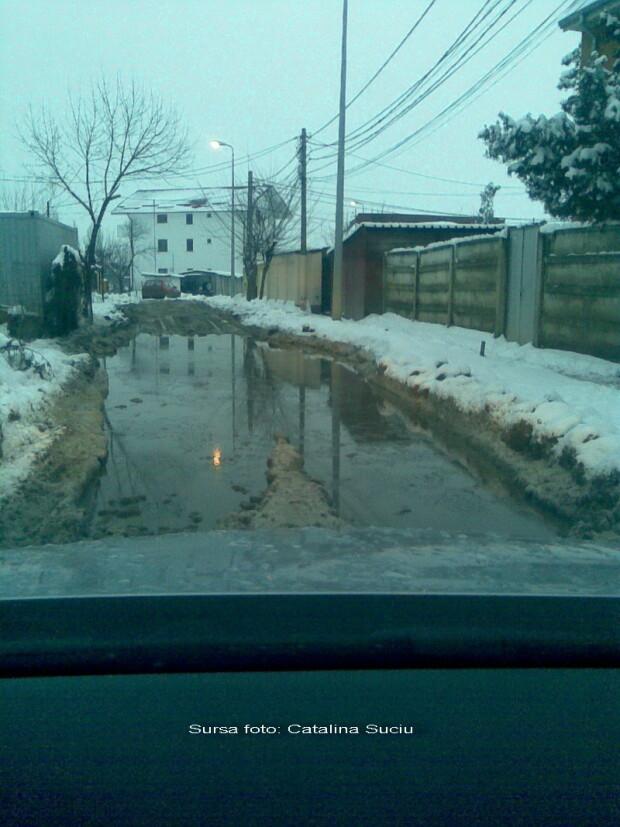 strada Malva