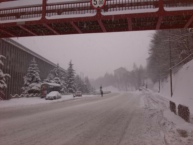 http://image.stirileprotv.ro/media/images/620xX/Jan2014/61457137.jpg