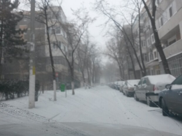 http://image.stirileprotv.ro/media/images/620xX/Jan2014/61457140.jpg