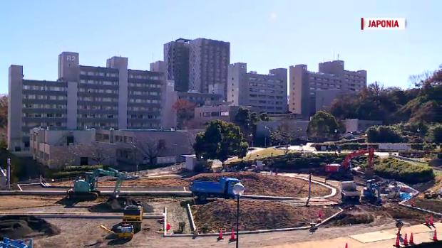 universitate Japonia