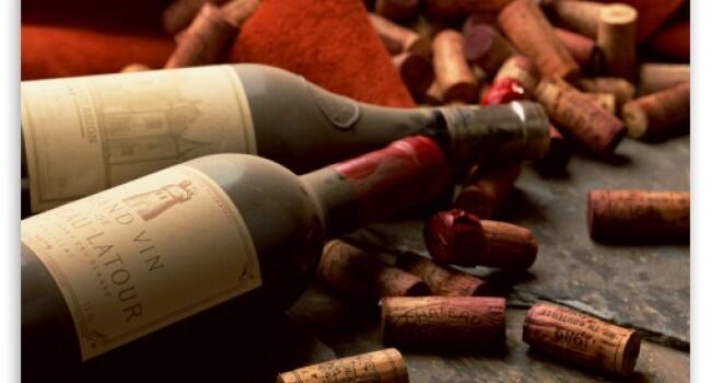 vin stcila