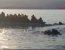 barca refugiati