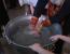 botez georgia