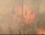 incendii vegetatie spania