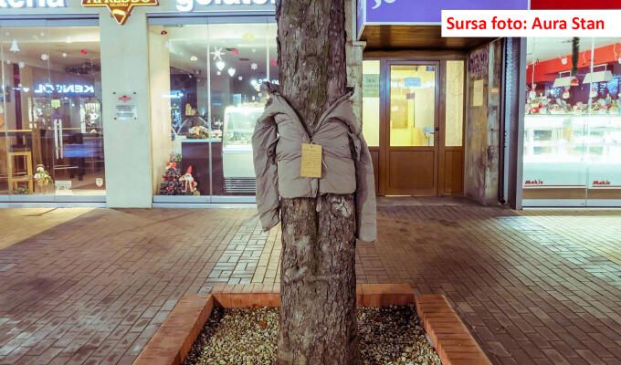 copaci - Aura Stan