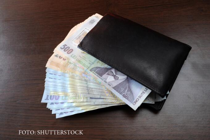 portofel plin cu lei