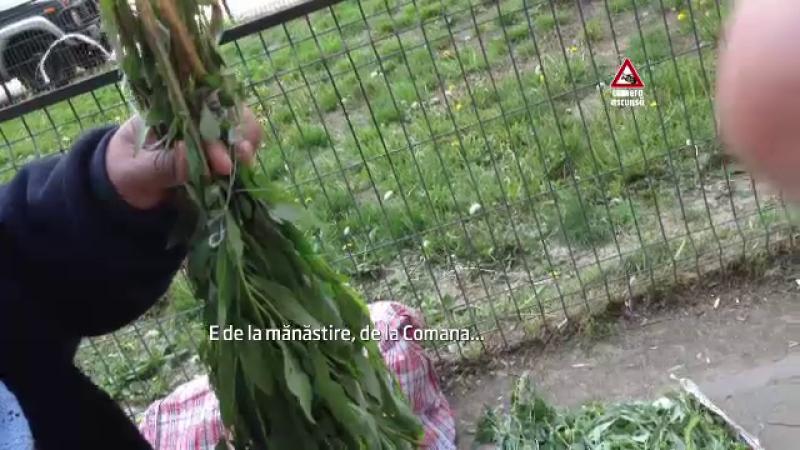 CAMERA ASCUNSA: Cum au strans negustorii ambulanti mii de lei incalcand traditia de Florii