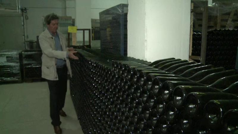 Viticultorii care produc vinuri nobile, stimulati cu subventii de la stat. Conditiile ce trebuie indeplinite pentru finantare