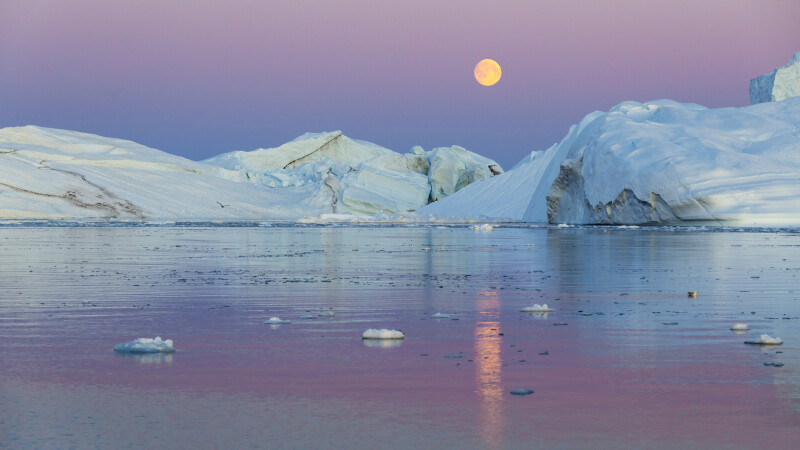 Un val de caldura a lovit Polul Nord si ar putea sparge nu numai gheata, ci si recordurile. Principalii vinovati: oamenii