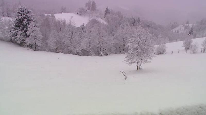 Cod Portocaliu de ninsori pana vineri, vantul va depasi 80 de km/h la munte. Zapada a atins 50 cm in Gorj