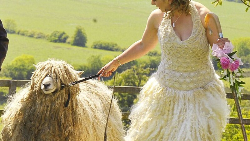 O britanica si-a facut rochia de mireasa din lana propriilor oi!