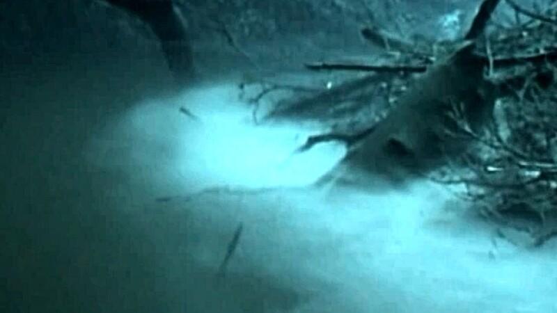 Raul care curge sub mare. Imagini VIDEO deosebite ale unui canal subteran dintr-o grota plina cu apa