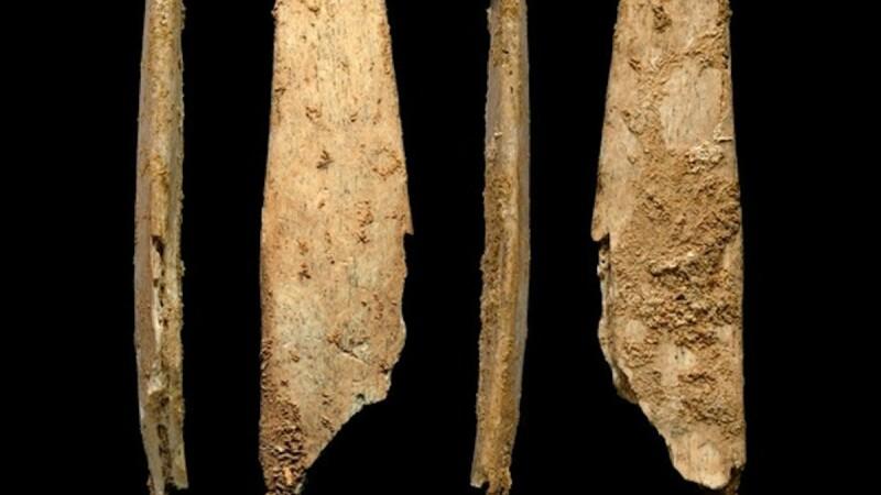 Oamenii de Neanderthal au inventat primele unelte specializate din Europa, acum 50.000 de ani