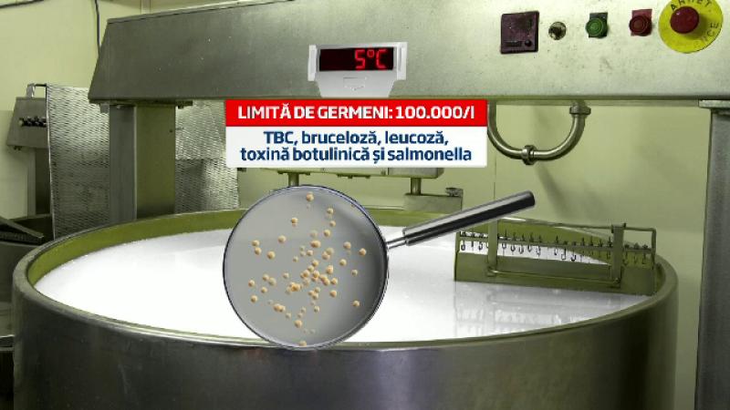 Noile reguli europene care vor obliga Romania sa transforme laptele in cascaval scump si parmezan