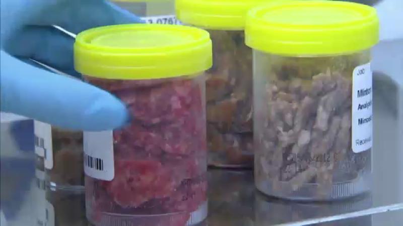Firma din Alba care vindea carne de cal etichetata drept vita, inchisa si amendata cu 22.000 lei