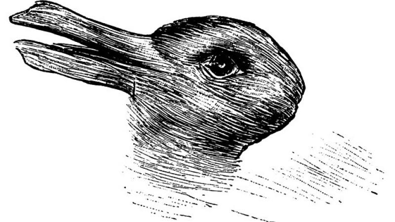 Iluzia optica, veche de 100 de ani, care le da batai de cap internautilor. Ce reprezinta de fapt, aceasta imagine