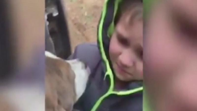 Reintalnirea emotionanta dintre un baietel si cainele care disparuse de acasa timp de o luna: