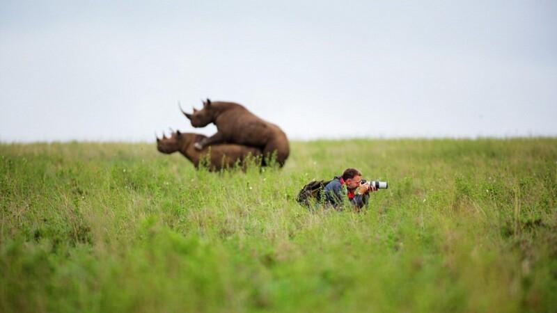 A ratat toata actiunea. Poza animale in Parcul National din Nairobi fara sa-si dea seama ce se petrece in spatele sau