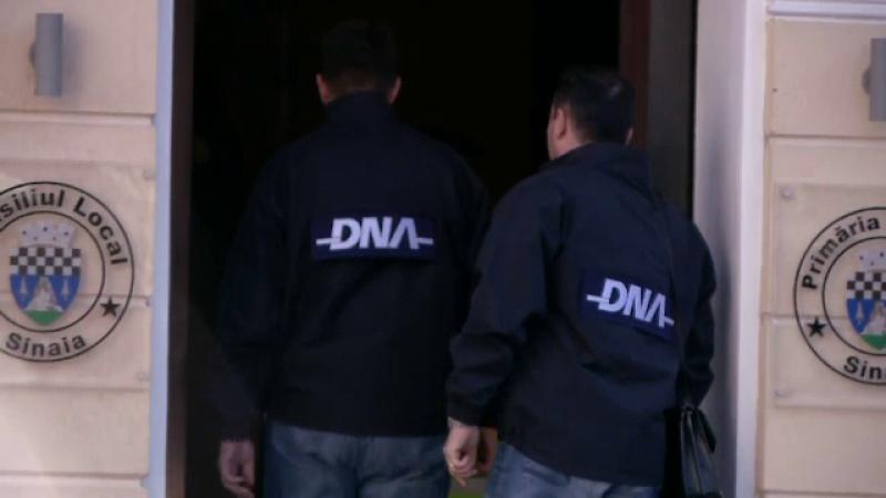 Peste 150 de perchezitii domiciliare au fost efectuate astazi de politisti la mafia lemnului
