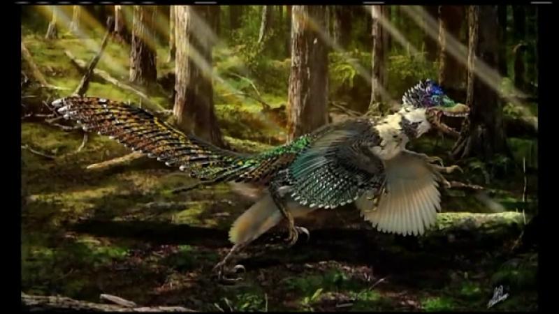 O noua specie de dinozaur, cu aripi masive si pene lungi, descoperita in China. Cum arata misterioasa creatura